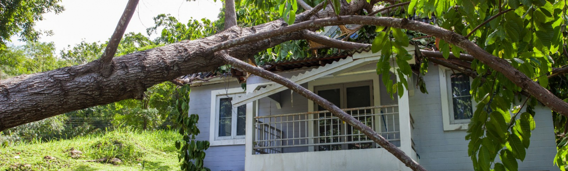 Does homeowners insurance cover roof replacement