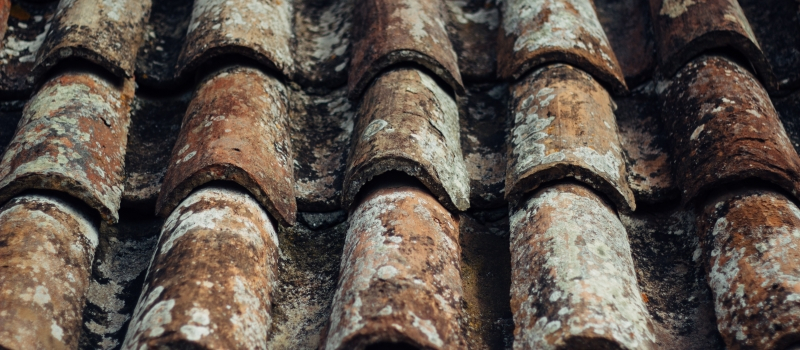 Should I Repair or Replace My Damaged Roof?