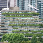 green roof on city building in toronto canada